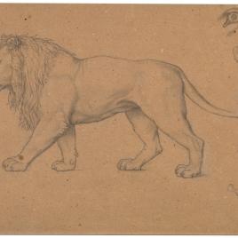 Estudio de figura de un león (Nuestra Señora de Fourvière, Lyon)