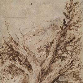 Estudio de árboles