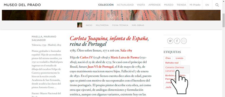 8. Canarios en el Prado