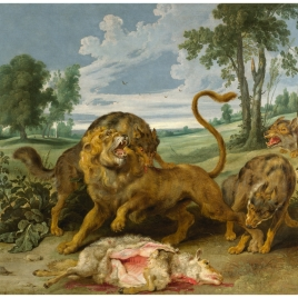A Lion and three Wolves