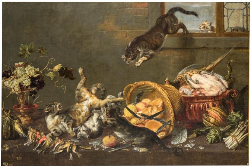 Pelea de gatos en una despensa