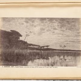 Paisaje del lago de Castel Fusano