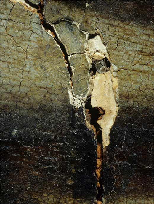 Nails of the cradling that oxidised and expanded over time, affecting the painting