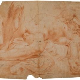 Desnudo masculino académico / Estudios de cuerpos de niños