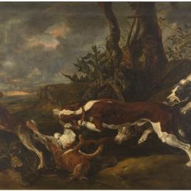 Liebres perseguidas por perros