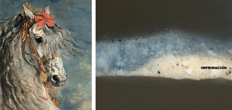 Fig.7: Detail of Diego Velázquez's Equestrian Portrait of Felipe III, 1635. 307 x 367 cm (P-1176). The cross-section of the micro-sample of the painting clearly shows a very light-toned priming layer (imprimación) beneath the layer of blue paint, which confers the painting great luminosity.