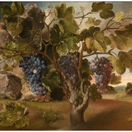 Landscape with a Vine