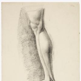Estudio de pierna masculina derecha