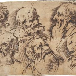 Estudio de seis cabezas de ancianos barbados