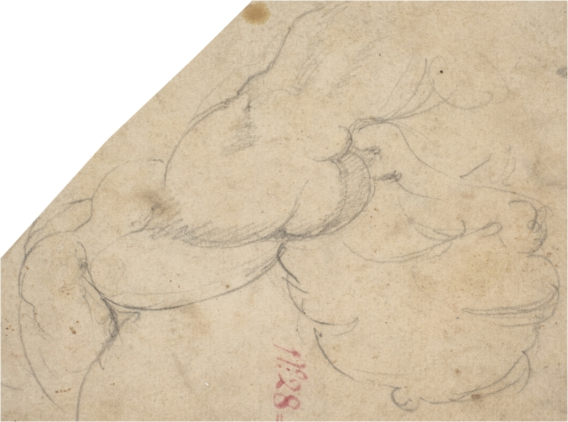 Dibujos Estampas Y Fotografia Coleccion Museo Nacional Del Prado