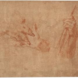 Estudios de manos