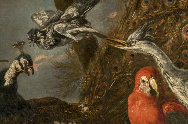 Parada 2: Concierto de aves