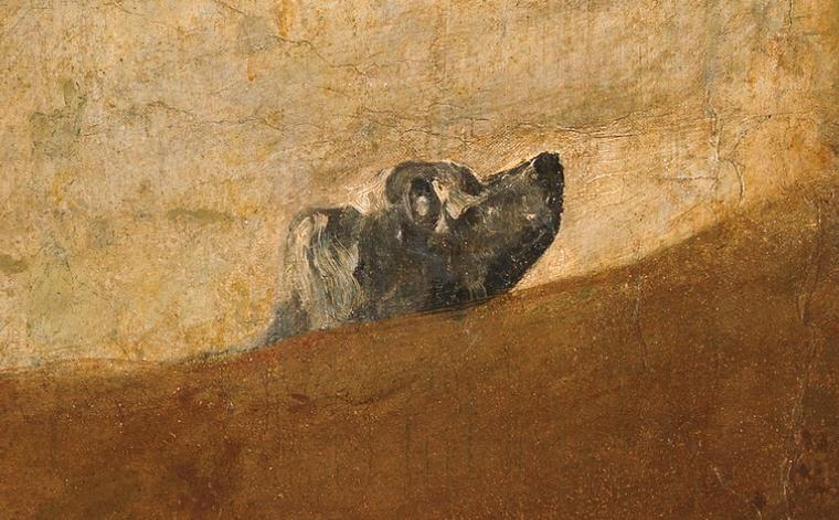 3. Quién o qué es el perro de Goya