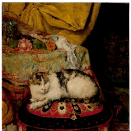 Un gato echado sobre un almohadón