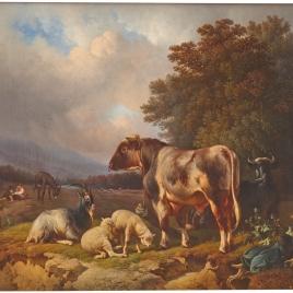 Un país con cabras, bueyes y corderos