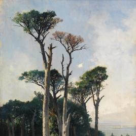 Pinos de Frascati
