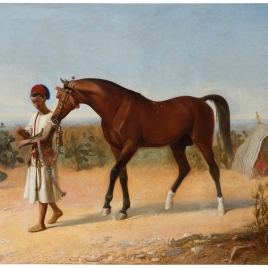 Joven marroquí llevando del diestro a un caballo