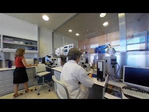 Gabinete técnico. Laboratorio de análisis en 360º