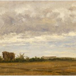 Palmeras (Elche)