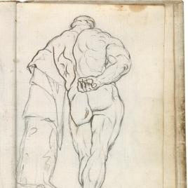 Hércules Farnese (vista dorsal derecha)