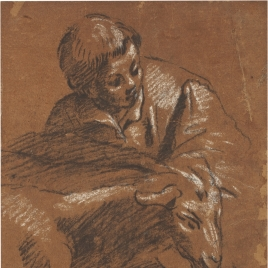 Boy with two sheep