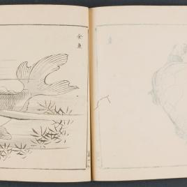 Cartilla de dibujos de primaria (Shogaku Nihon gajyô)