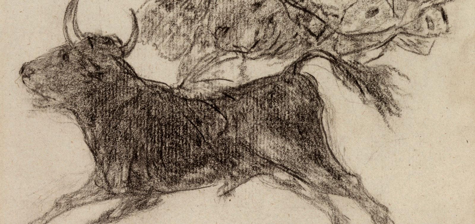 Goya. El toro mariposa