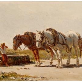 Estudio de caballerías