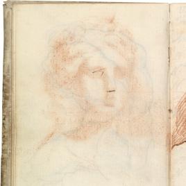 Cabeza femenina clásica (Juno), contradibujo