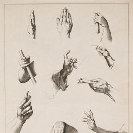 Estudios de brazos y manos