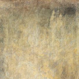 Goya [Material gráfico] : El perro semihundido / Museo Nacional del Prado.