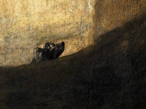 <em>Perro semihundido</em>, Francisco de Goya y Lucientes, comentada por Rafael Canogar