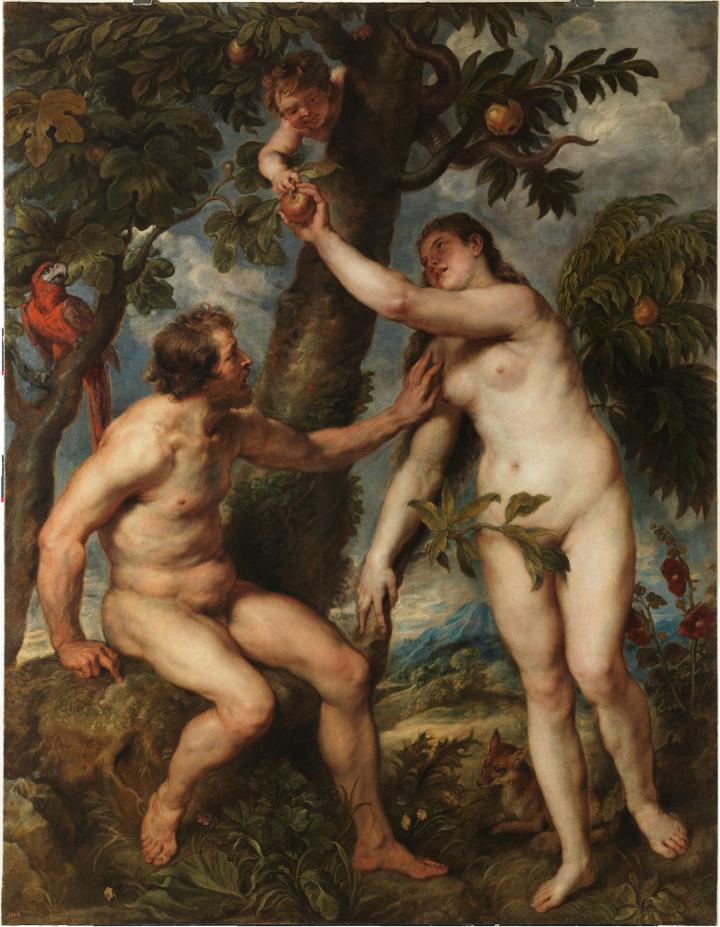 Rubens se reencuentra con Tiziano a través de Adán y Eva