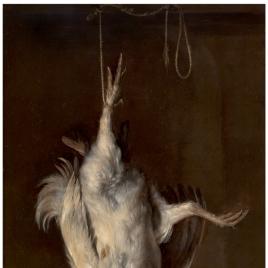 Gallo muerto