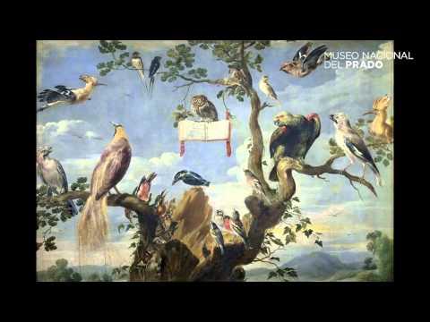 Historias Naturales: Conservatorio para pájaros