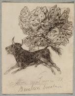 Toro mariposa, El [Goya]
