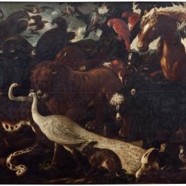 Animales camino del arca