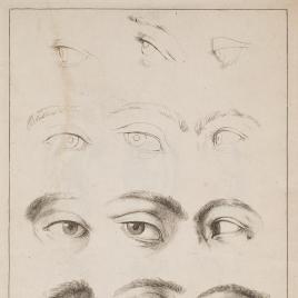 Estudios de ojos