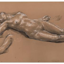 Desnudo femanino y estudio de extremidades