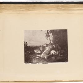 Dos liebres y una perdiz muertas