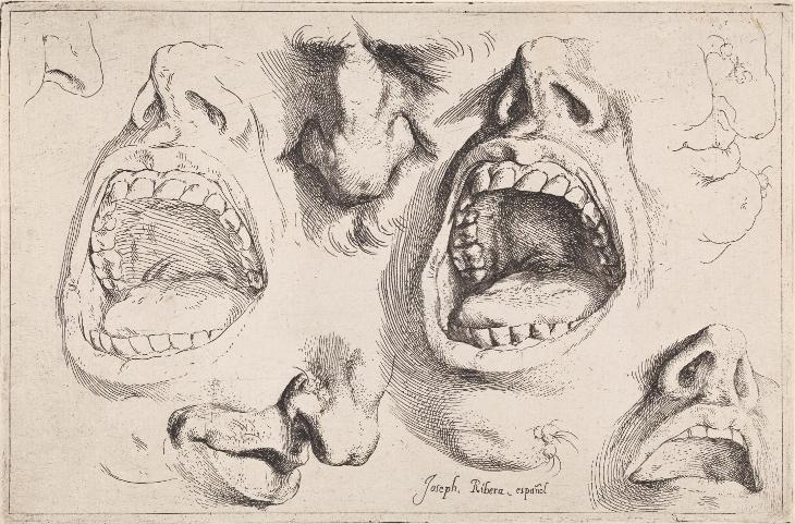 Estudio de narices y bocas