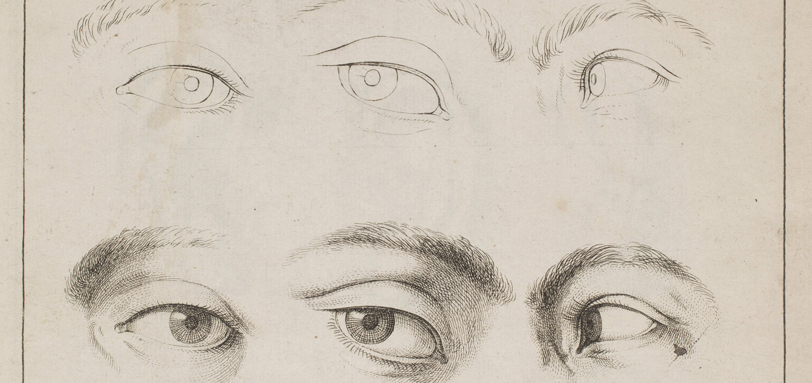 Master of Paper. Drawing Books from the Seventeenth to the Nineteenth Centuries