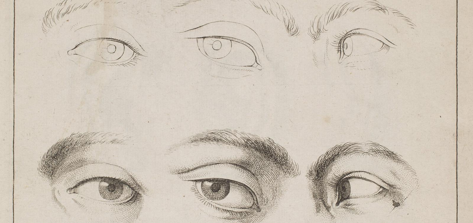El maestro de papel. Cartillas españolas para aprender a dibujar de los siglos XVII y XVIII