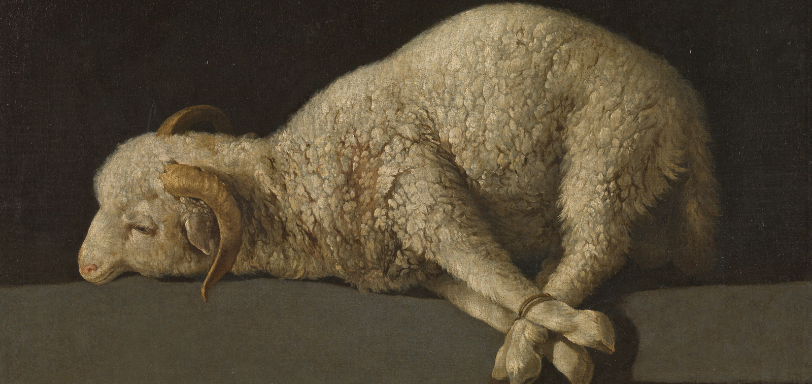 Exposición didáctica: El Prado en Bogotá
