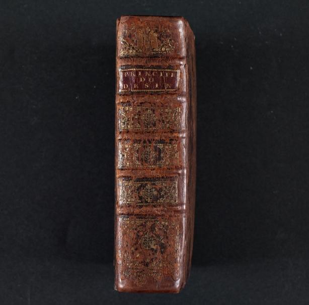 Manuscrito de principios artísticos de Rubens (Manuscrito Bordes)