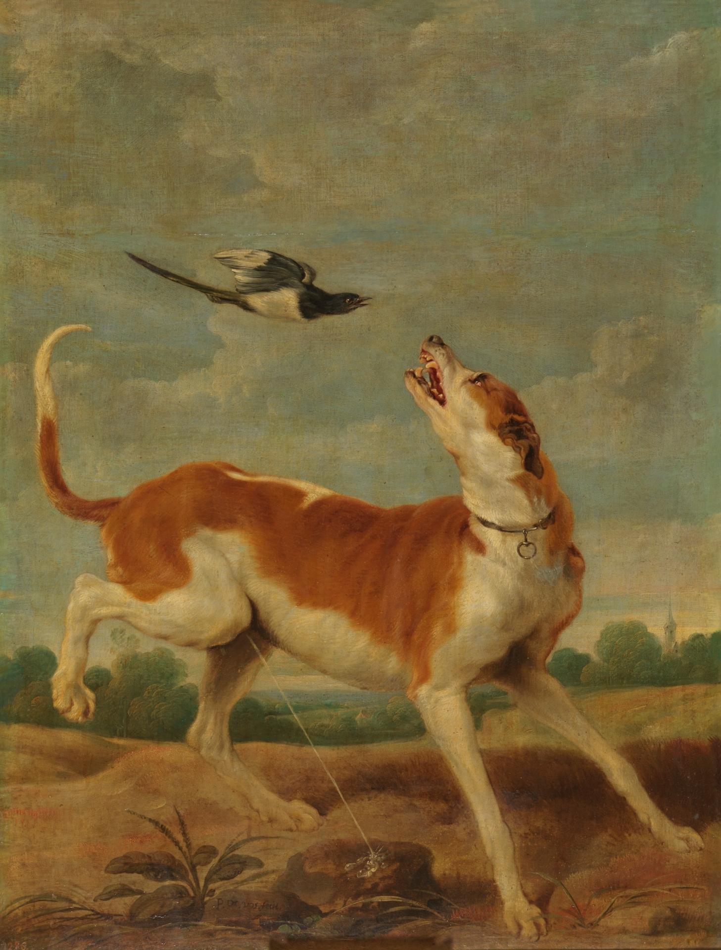 El perro y la picaza - Colección - Museo Nacional del Prado