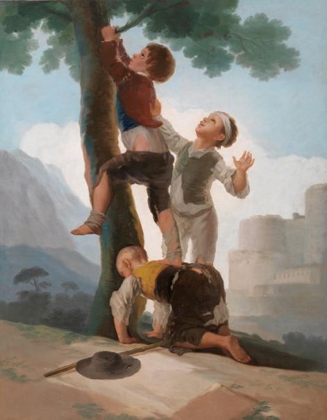 Boys Climbing a Tree