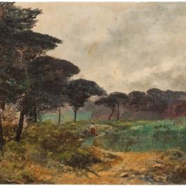 Los pinos de la Casa de Campo