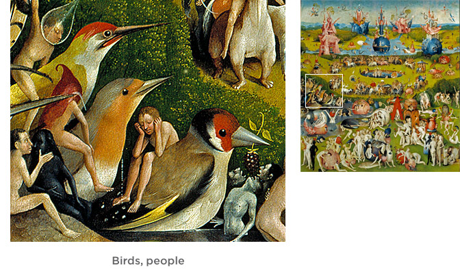 Birds, people